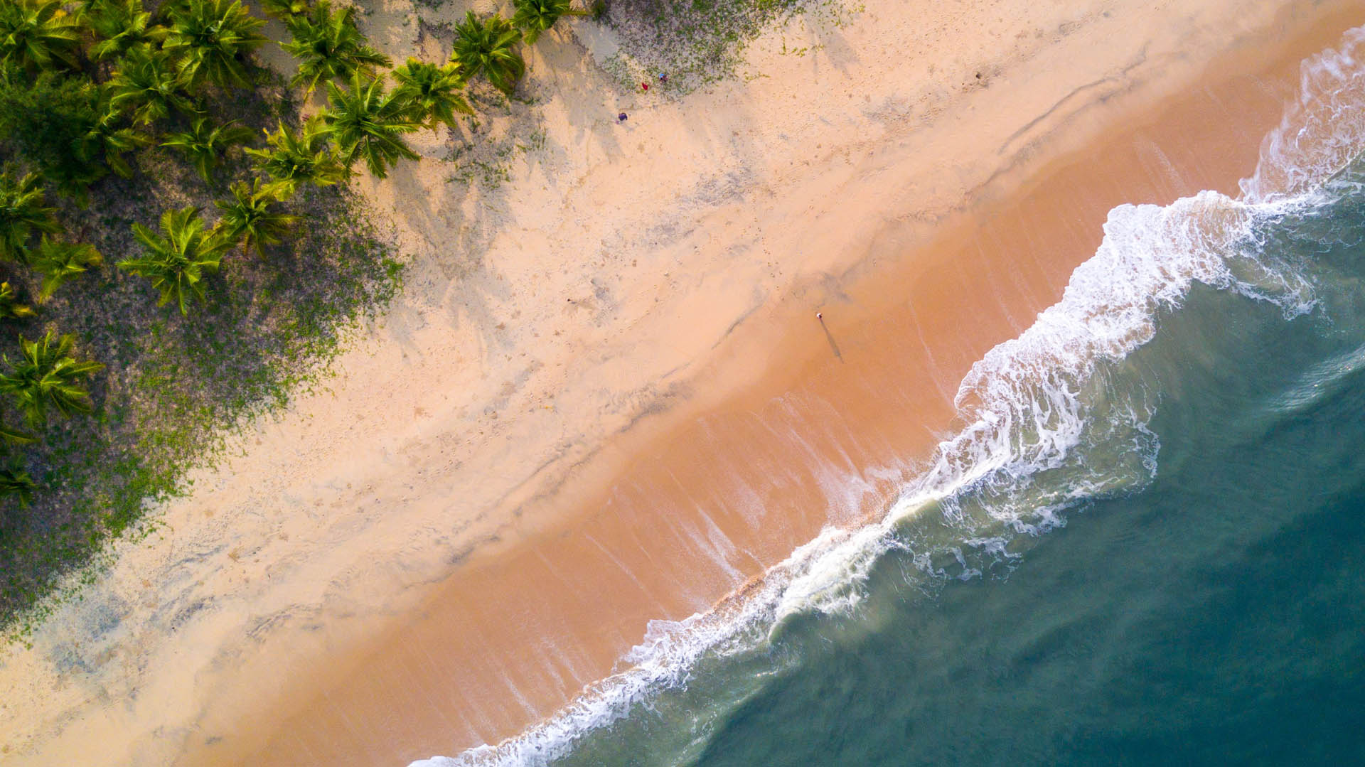 Der Traumhafte Strand beim Marari Beach Resort
