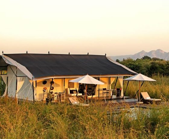 Indien Luxus Reisen Märchenhafte Paläste und magische Zelte 560x460