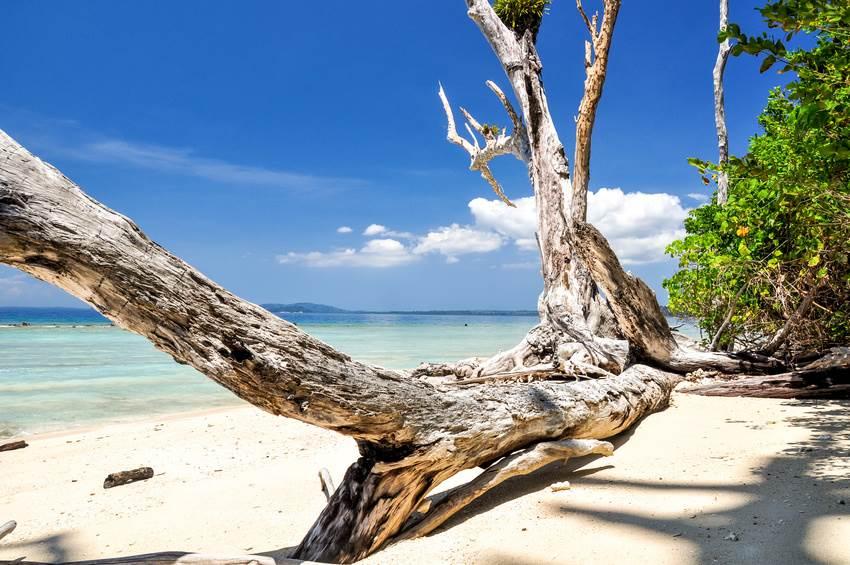 Der Elephant Beach Strand auf Havelock - Andaman Inseln