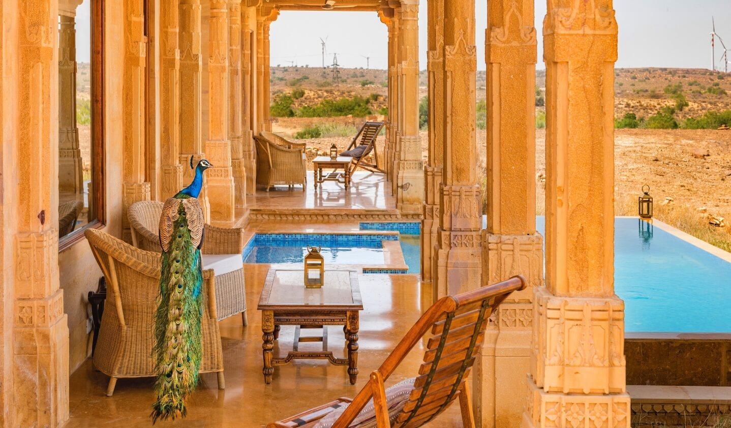 Ein Pfau im Suryagarh, Jaisalmer, Rajasthan