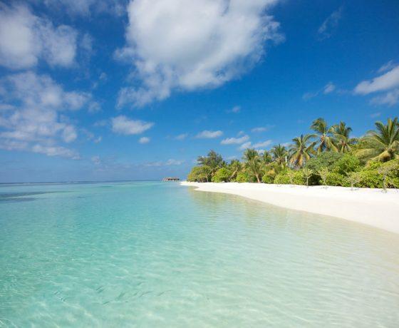 Luxus Indien Reise mit Badeaufenthalt auf den Malediven 1 560x460